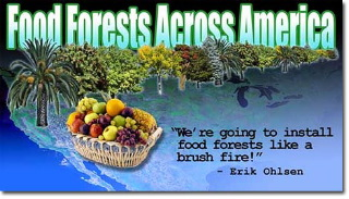 food_forests_across_america