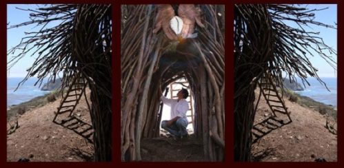 nest-header2